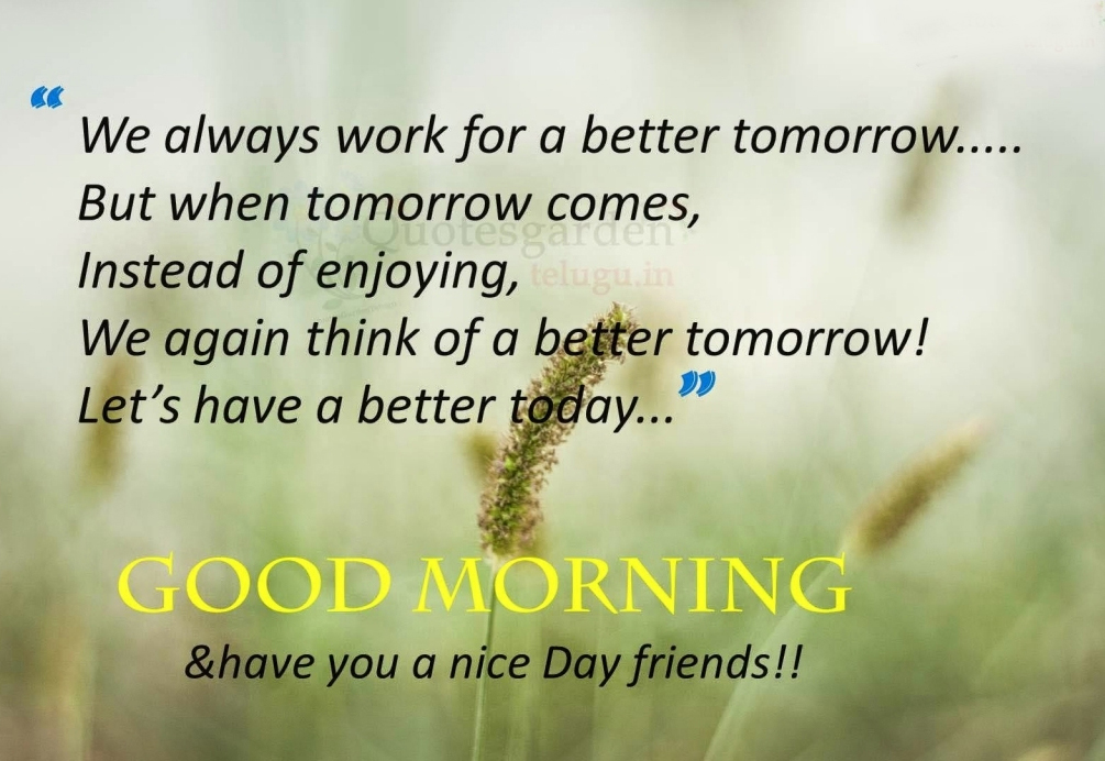 Good Morning Quotes Bengal Daily